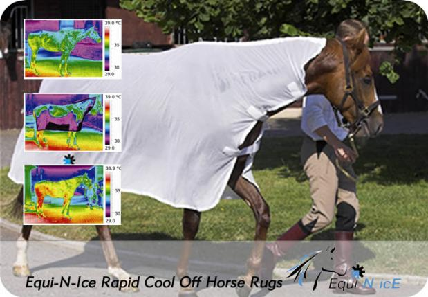 Rapid cool off horse rugs